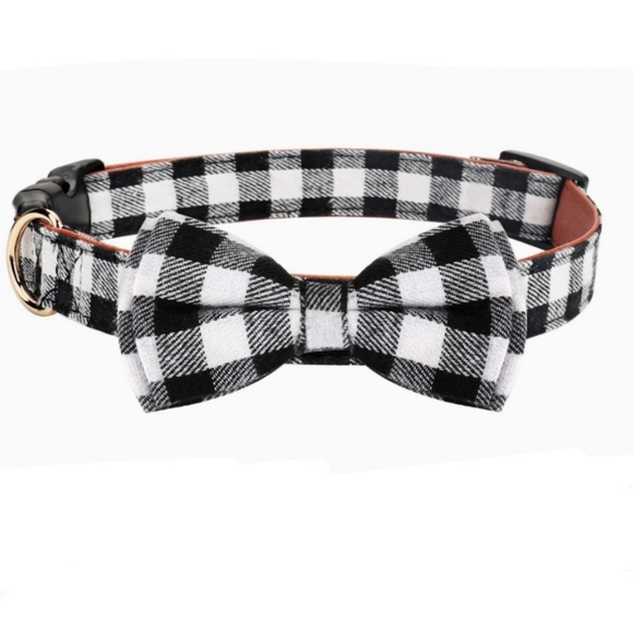 Other - Dog bow collar
